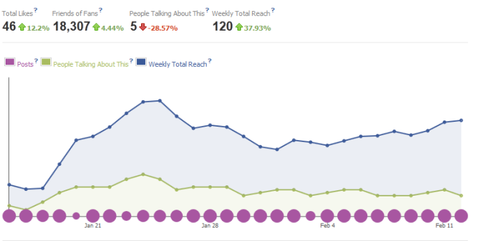 facebook insight for paras doshi's blog