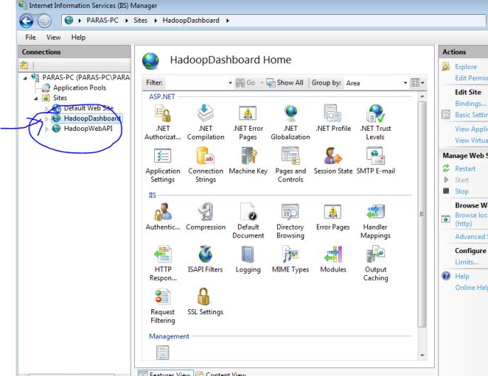 IIS windows hadoop local host site port 8085
