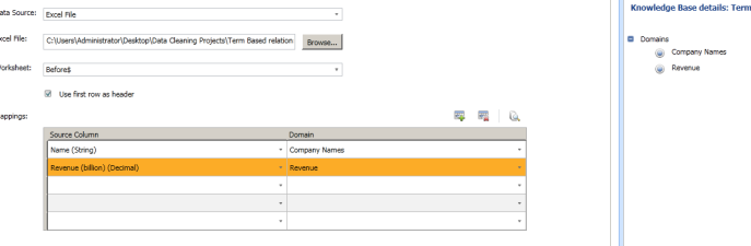 3. DQS Project Mapping Domain Names