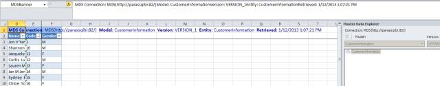 SQL Server create entity Master Data Services Excel