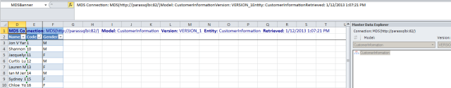 SQL Server create entity Master Data Services Excel