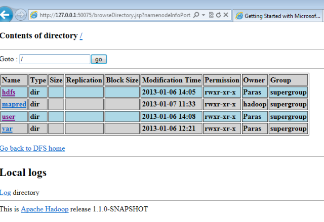 hadoop file system name node status windows