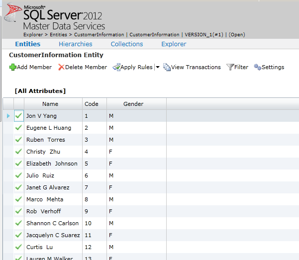 MDS web application explorer SQL Server