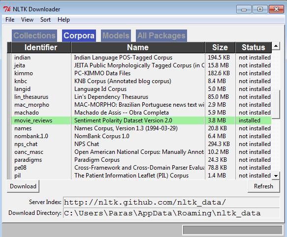 python nltk download data