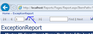 SSRS properties report native mode